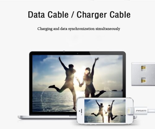 Pisen Original Cable for IPhone and IPad